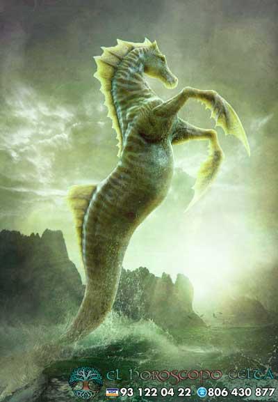 Caballito de Mar - tu signo del Horóscopo Celta animal