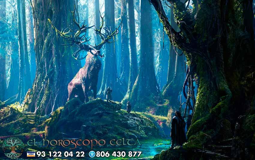 Cernunnos - el ciervo - tu animal del Horóscopo Celta