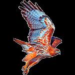 Halcon - Animales del Horoscopo Celta 150x150