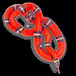 Serpiente - Animales del Horóscopo celta