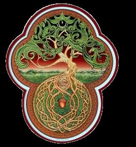 el horóscopo celta - árbol de la vida