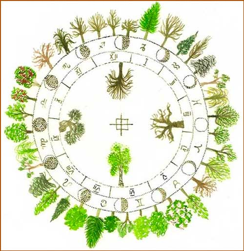 los Árboles del horóscopo celta
